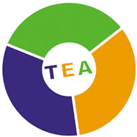 The TEA model to analyse thoughts, emotions and actions